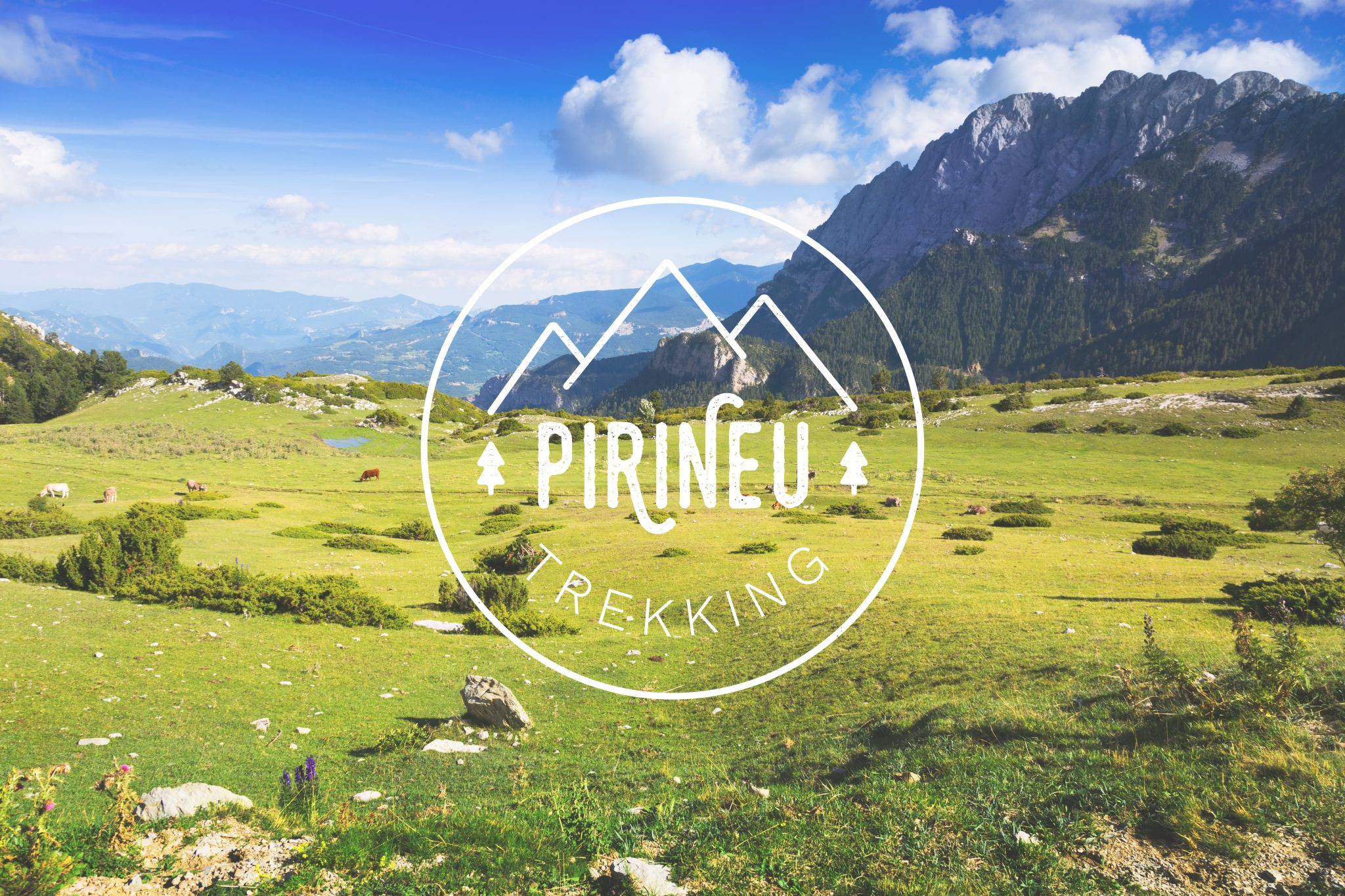 Pirineu Trekking